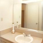 Belle Grove Apartment Washroom