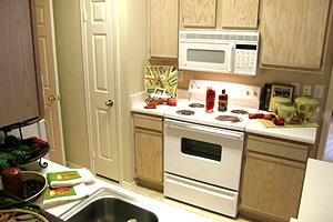 Sonterra at Buckingham Apartment Kitchen