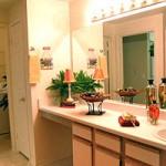 Sonterra at Buckingham Apartment Washroom
