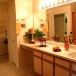 Sonterra at Buckingham Apartments Washroom