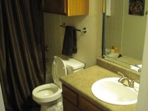 Spring Pointe Apartments Washroom